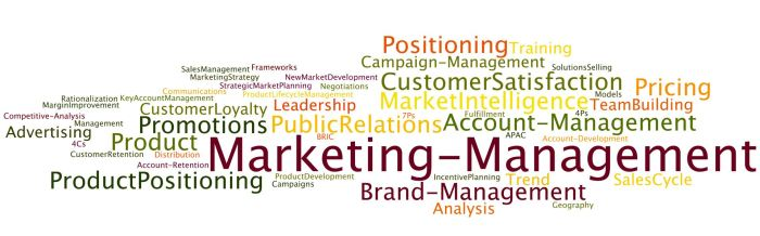 Marketing_Management_Themes