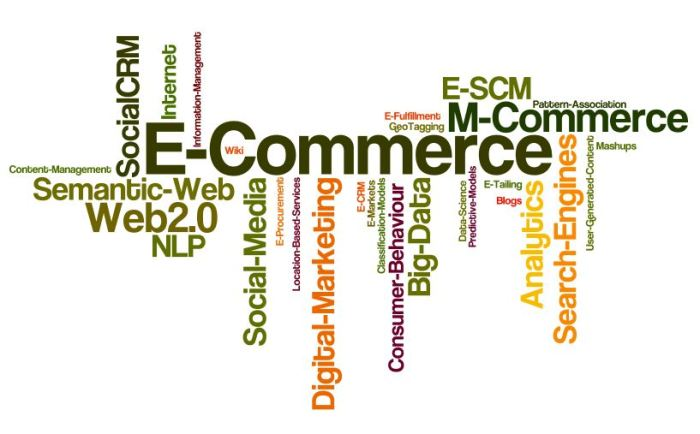 E-Commerce_Domains_Themes