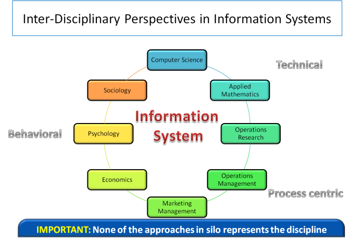 Information_Systems_Perspectives