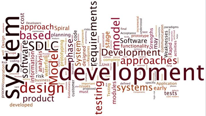 SDLC_Domain1