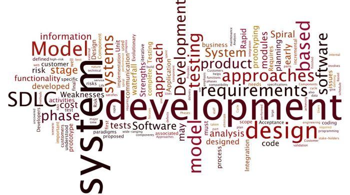 SDLC_Domain2
