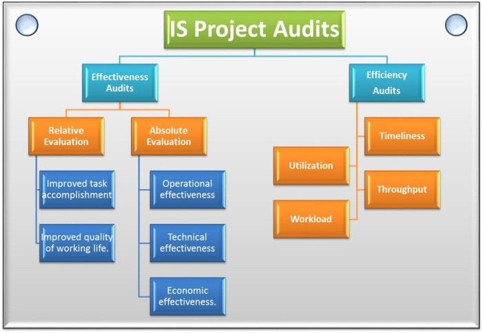 Information_Systems_Audits