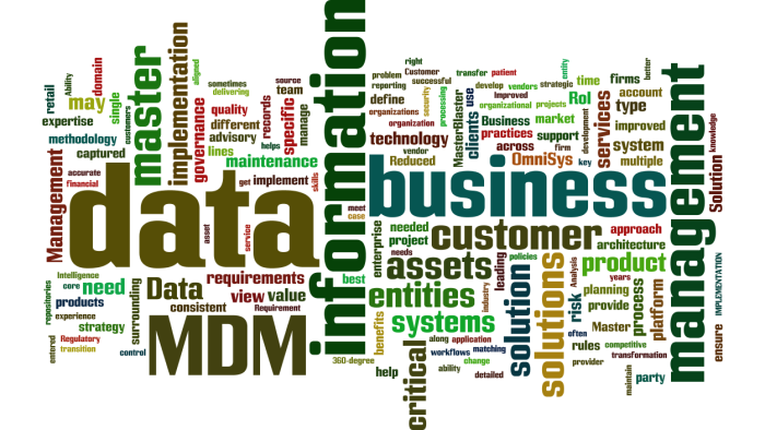 MDM_Master_Data_Management11