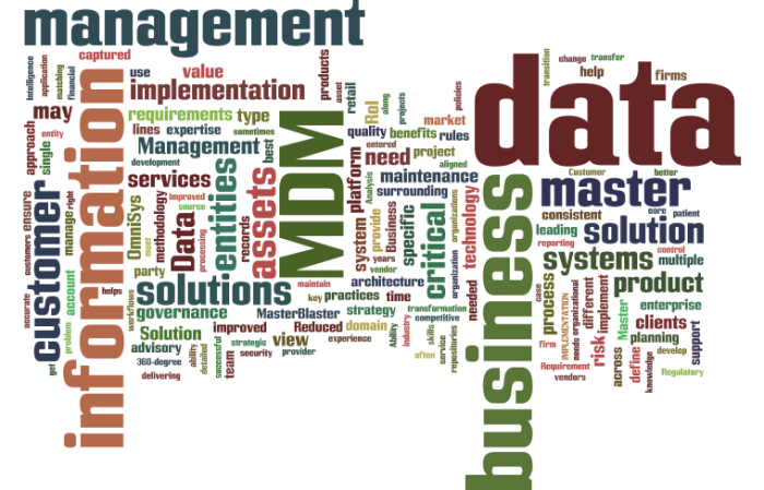 MDM_Master_Data_Management13