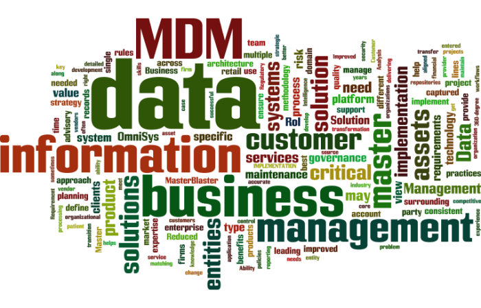 MDM_Master_Data_Management14