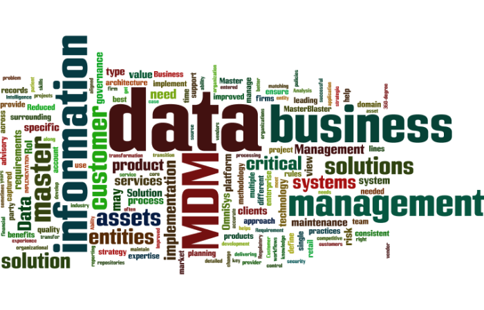 MDM_Master_Data_Management15