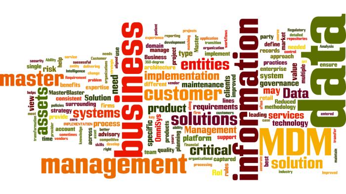 MDM_Master_Data_Management2