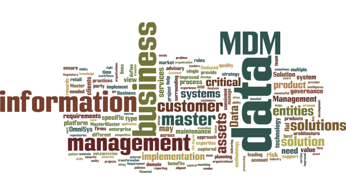 MDM_Master_Data_Management3