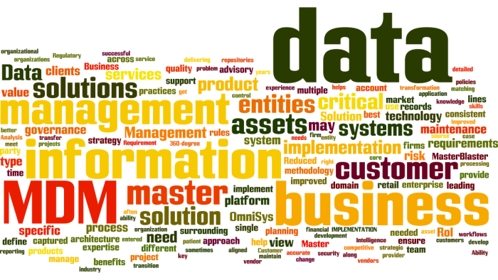 MDM_Master_Data_Management5