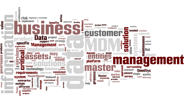 MDM_Master_Data_Management6