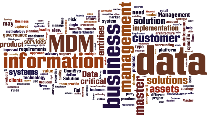 MDM_Master_Data_Management7