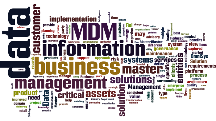 MDM_Master_Data_Management9
