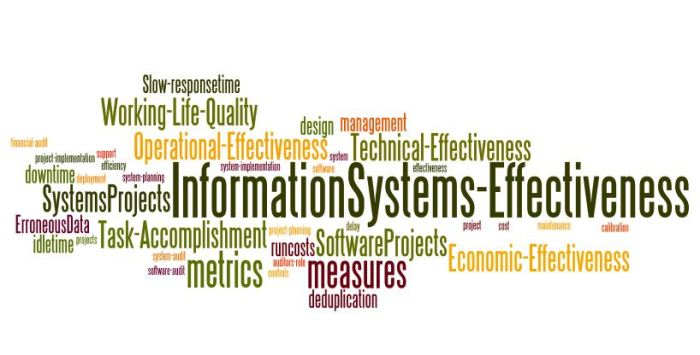 InformationSystems_Effectiveness_1