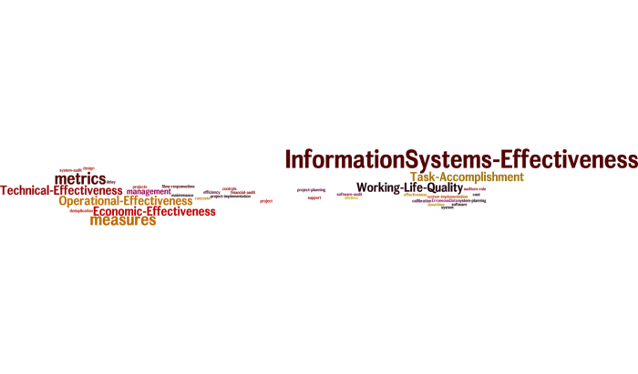 InformationSystems_Effectiveness_12