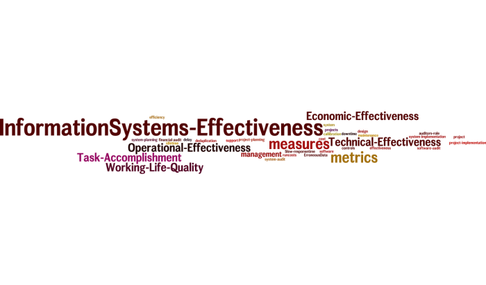 InformationSystems_Effectiveness_13