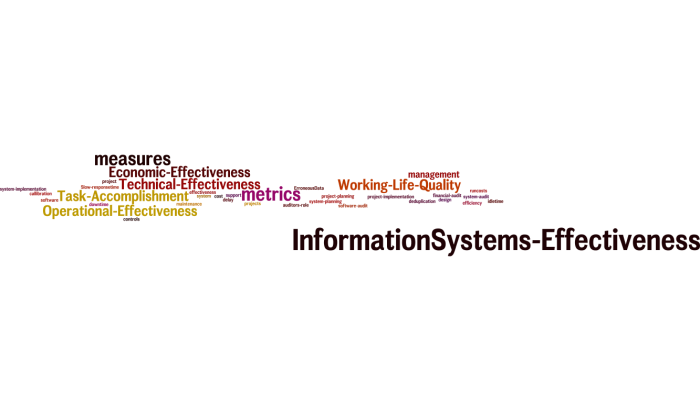 InformationSystems_Effectiveness_14