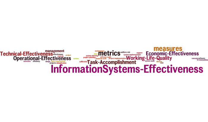 InformationSystems_Effectiveness_15