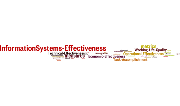 InformationSystems_Effectiveness_16