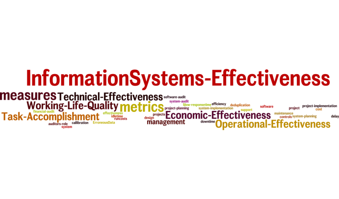 InformationSystems_Effectiveness_17