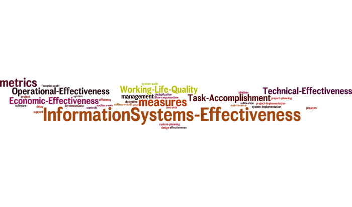 InformationSystems_Effectiveness_18