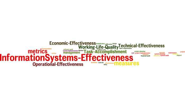 InformationSystems_Effectiveness_19