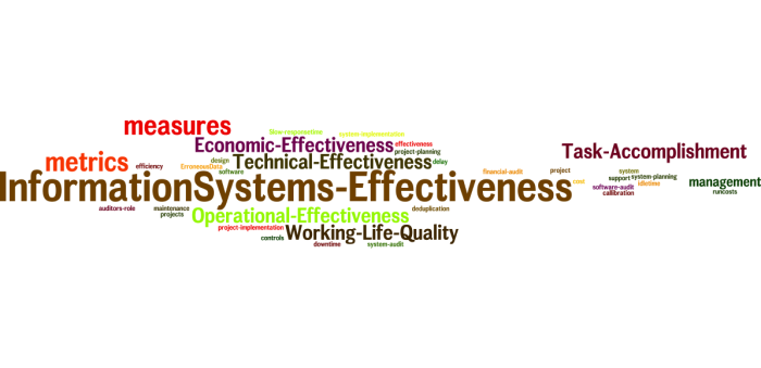 InformationSystems_Effectiveness_20