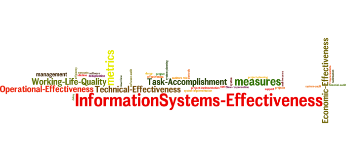 InformationSystems_Effectiveness_22