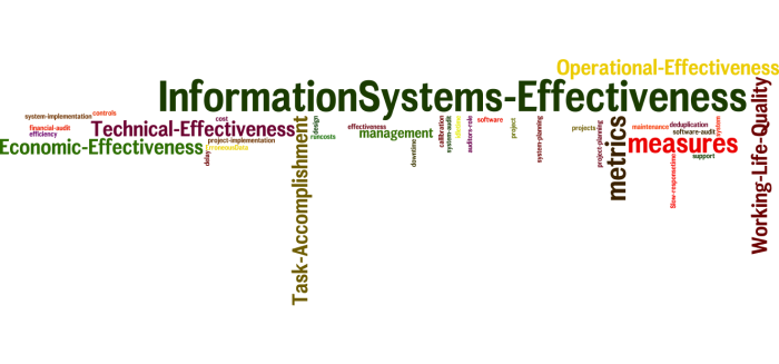 InformationSystems_Effectiveness_24