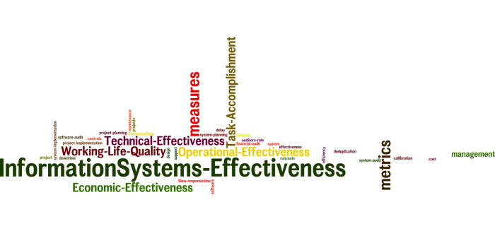 InformationSystems_Effectiveness_25
