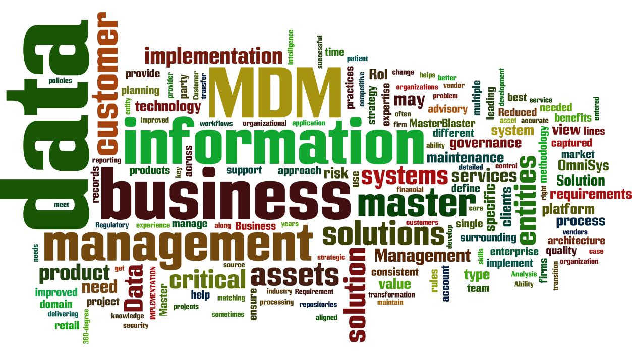 12 master data management  mdm  cloud words infographic