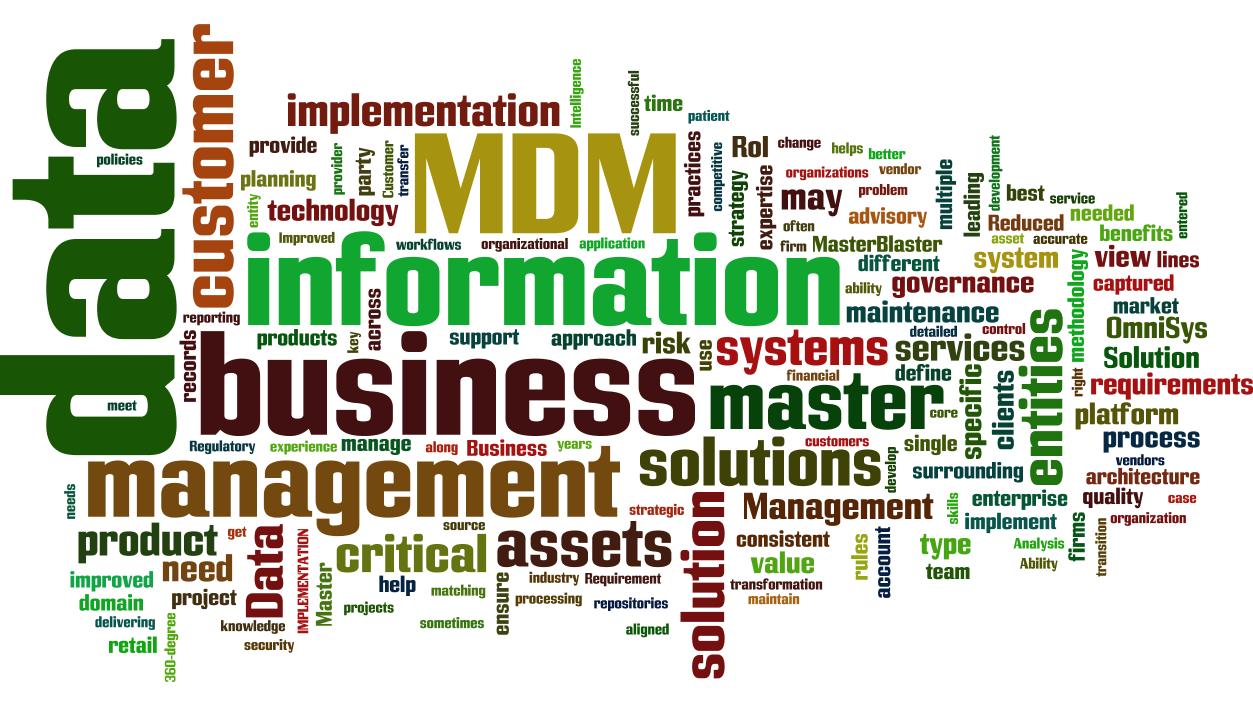 12 Master Data Management Mdm Cloud Words Infographic