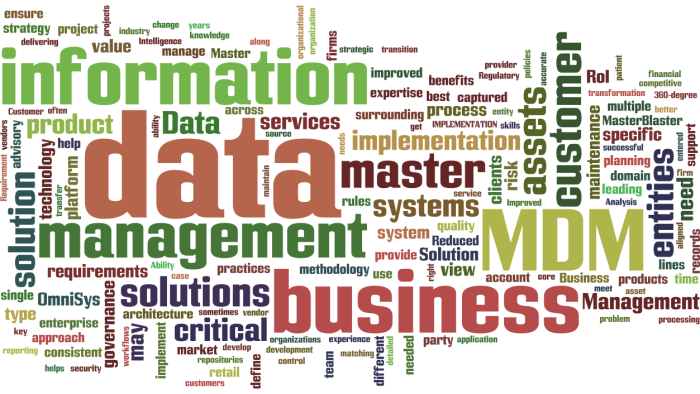 MasterDataManagement12