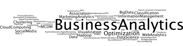 BusinessAnalytics3