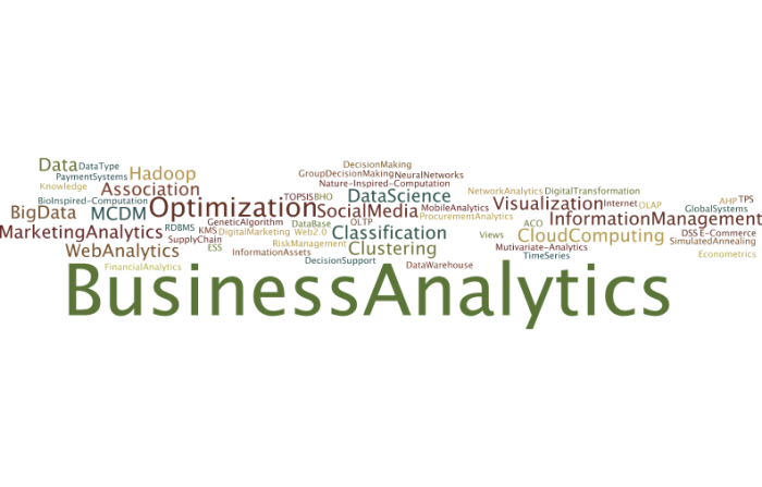 BusinessAnalytics5