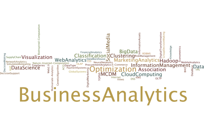 BusinessAnalytics6